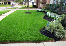 Maryland-Lawn-Care
